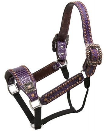 Showman Purple Snake Print Belt Style Halter | ChickSaddlery.com