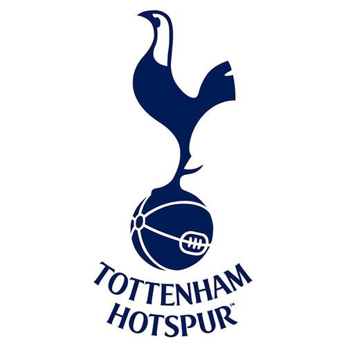 Tottenham FC Spurs 1m x 1m Vinyl Wall Football Logo Sti...
