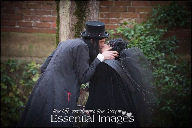 Love at a Halloween Wedding at Southampton Registry Office! Wedding Photographers in the New Forest