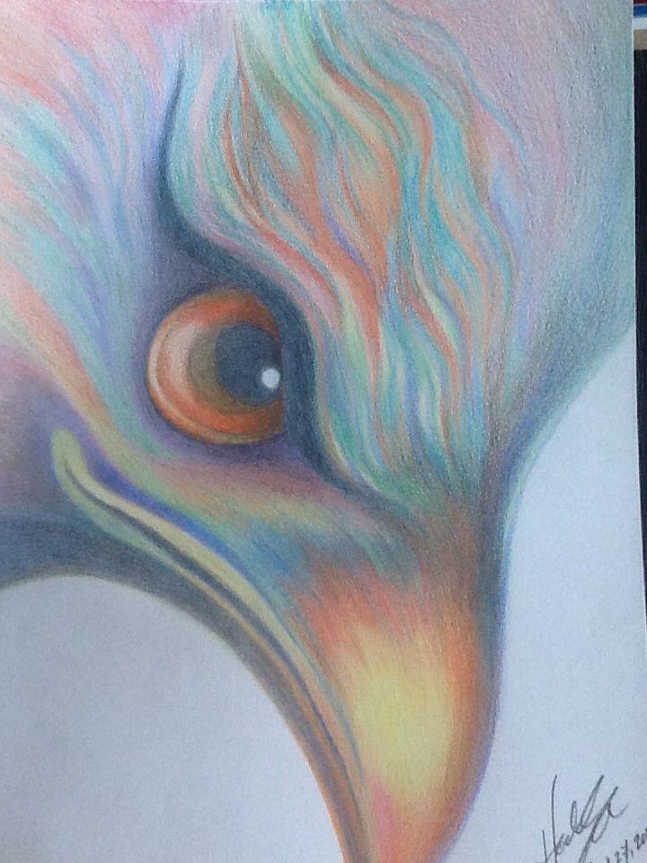 Rainbow Eagle: colored pencil