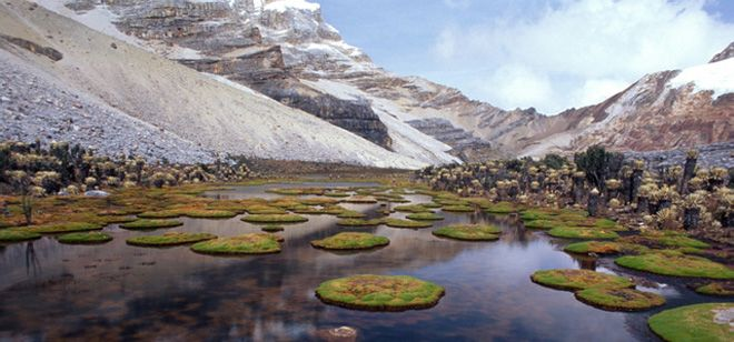 Parque Nacional Natural Cocuy - COLOMBIA