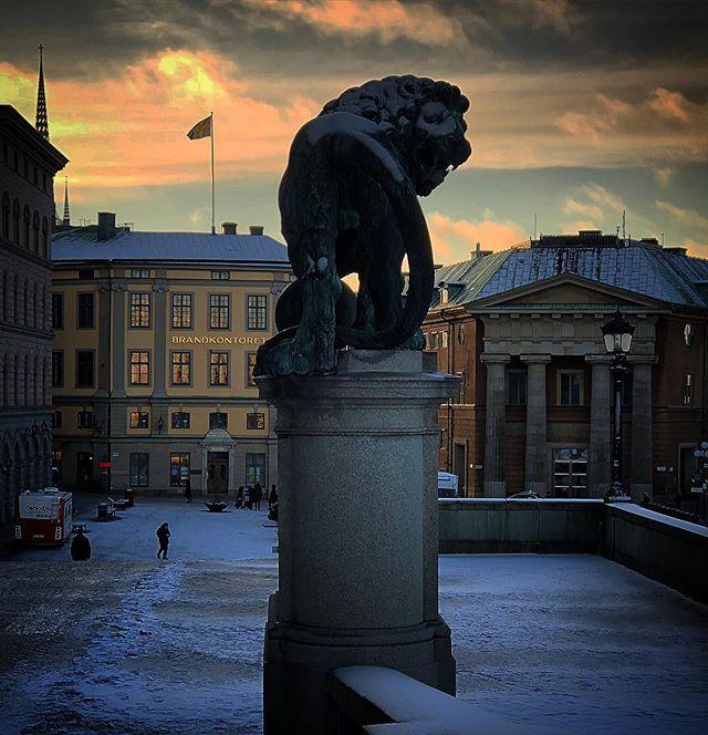 The white masked lion #stockholmsslott #stockholm #visitstockholm #sweden #visitsweden #snowed #statue #travel #ttot #stockholmcastle #photobydavidfeldt