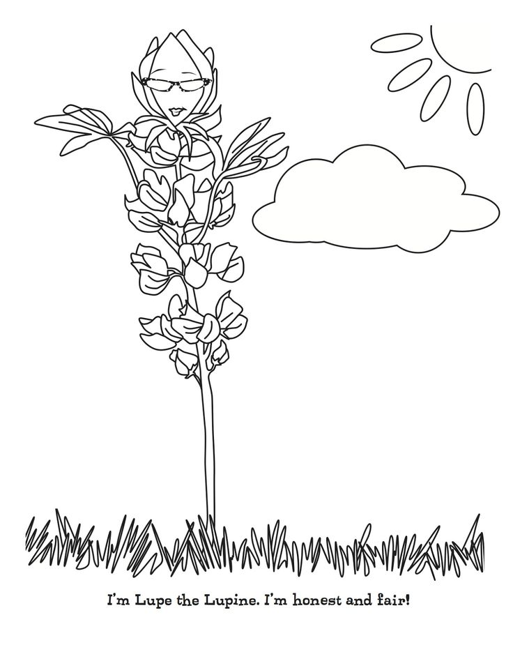 63 best images about daisy girl scouts on pinterest for Daisy petal coloring page