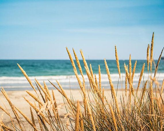 Coastal prints beach photography ocean beach scene 8×10 nautical decor golden te… – your anyone