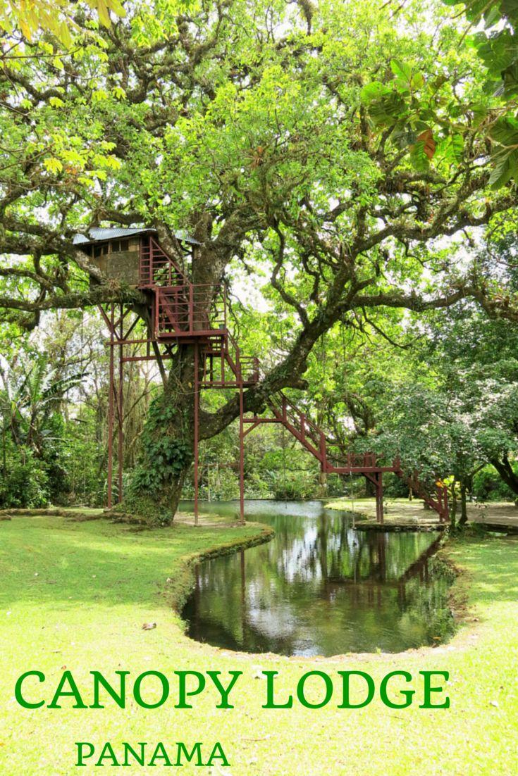 Canopy Lodge, El Valle de Anton, Panama. Deux randonnées guidées avec ornithologue sont organisées chaque jour.