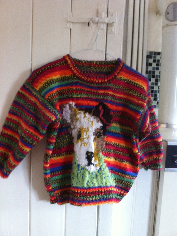 A rainbow jumper that I knitted for my grandson. It has a picture of a Jack Russell wearing a jumper on the front.