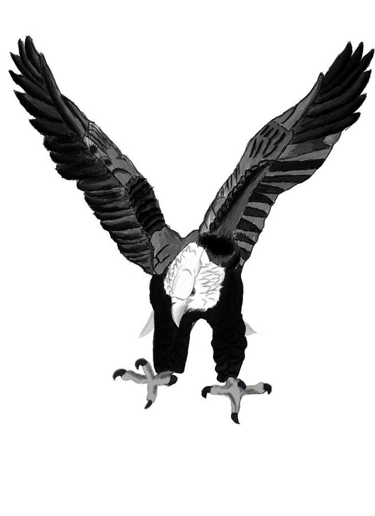 Best 20 Eagle Tattoos Ideas On Pinterest