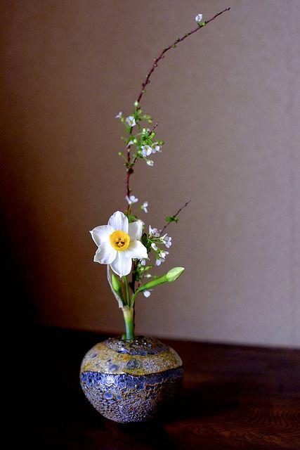 DSCF2273   lotus-aki   Flickr