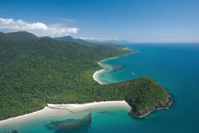 Cape Tribulation - Daintree Rainforest