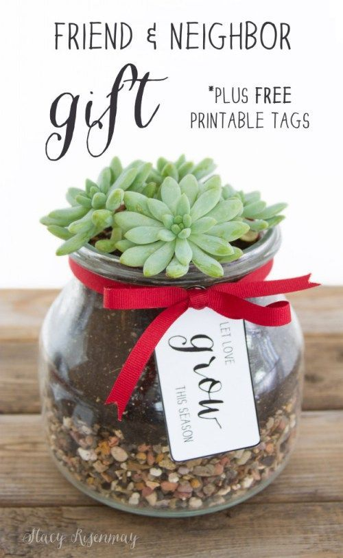 Holiday Gift Idea: Friend and Neighbor gifts with free printable tags! A small succulent is the perfect gift for the Christmas season!