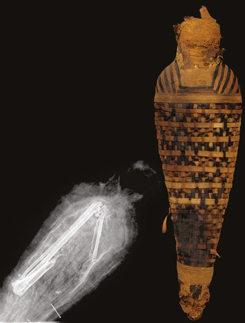 An X-ray of this elegantly wrapped hawk mummy dating to between 30 B.C. and A.D. 395 shows it contains only a single bird's wing.