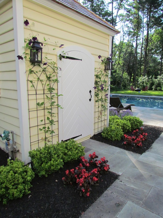17 Best Images About Trellis For The Yard On Pinterest