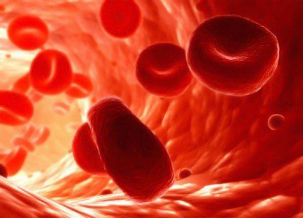 Рецепты для разжижения крови