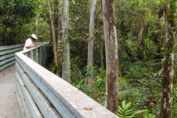 Hikes near Fort Lauderdale   Florida Hikes!