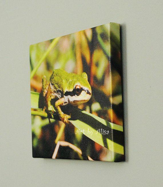 Canvas Photo Frog wildlife gift art photo by Turtlesandpeace