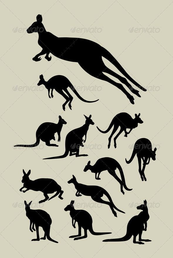Kangaroo Silhouettes  #GraphicRiver         Nice and detail silhouette vector (Can use any size you want without loss resolution). Good use for your symbol, logo, sticker, wallpaper, or any design you want. ZIP included : AI rgb, EPS8, JPEG high resolution, PNG transparent, and CDR (CorelDraw)     Created: 27June13 GraphicsFilesIncluded: TransparentPNG #JPGImage #VectorEPS #AIIllustrator Layered: No MinimumAdobeCSVersion: CS Tags: action