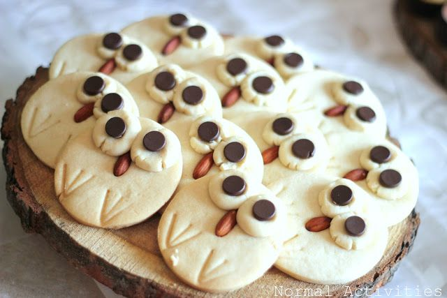 owl cookies - woodland baby shower