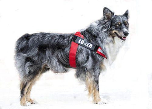 Reflective Big Dog Harness Adjustable with Handle Outdoor Vest for Large Breed Dogs with Removable Patches for Climbing Walking& Hiking (XL Red)