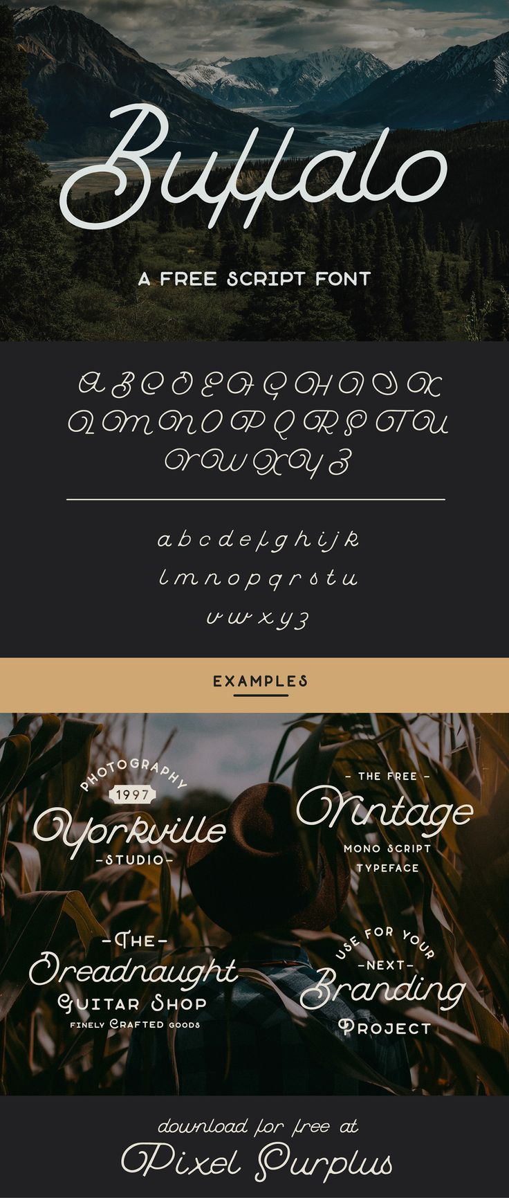 Buffalo is a loopy & quirky monoline script font from Hustle Supply Co.  This premium free font is vintage themed and perfect for branding and promotional projects! - Free for Personal & Commercial use.