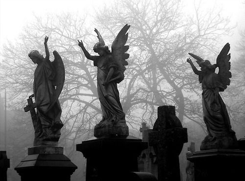 someone once told me that those angel statutes you see..are demons. you just dont know that because whenever you look at them they look oh so innocent. but when you look away, their faces change to evil. the ones who look like their crying are just hiding the hideous demon faces from you..