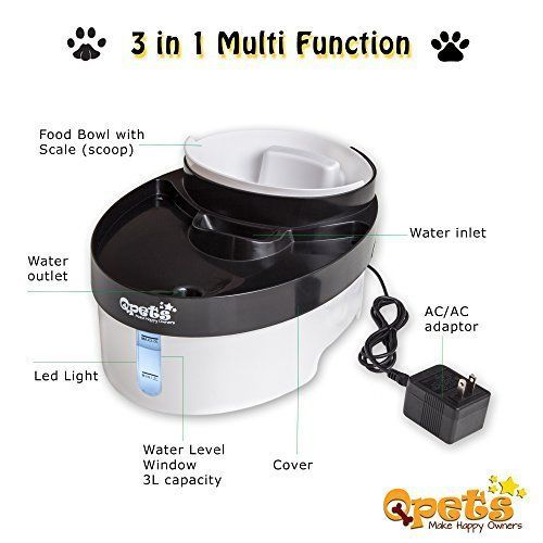 Best Electric Water Bowls For Cats