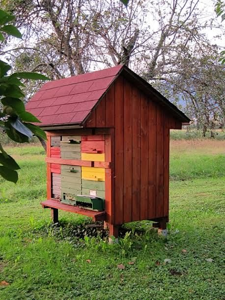 The Slovenian Beehive Arrives in the US   Keeping Backyard Bees