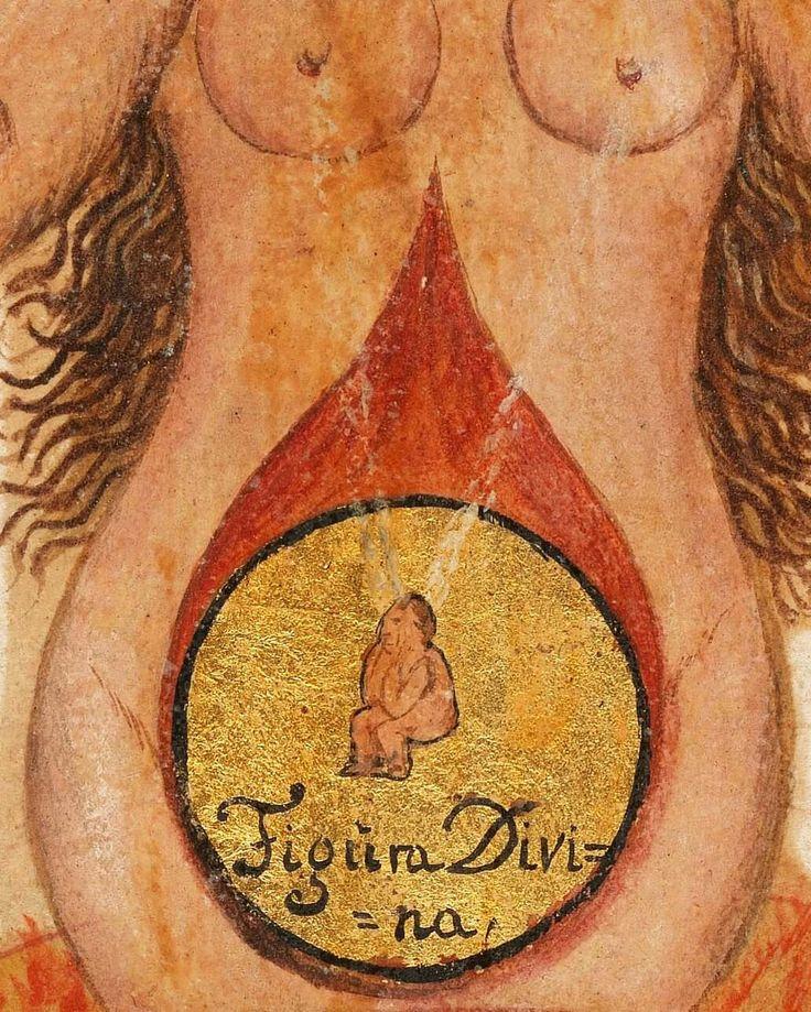 La Figura Divina che nasce nel corpo di Sofia. Notevole il dettaglio del latte dei seni, simile a raggi di luce, che giunge a nutrire il Figlio.  (La Vergine Sofia, dettaglio da Gemma Sapientiae et Prudentiae, 1735 - Wellcome Library, MS 2492)