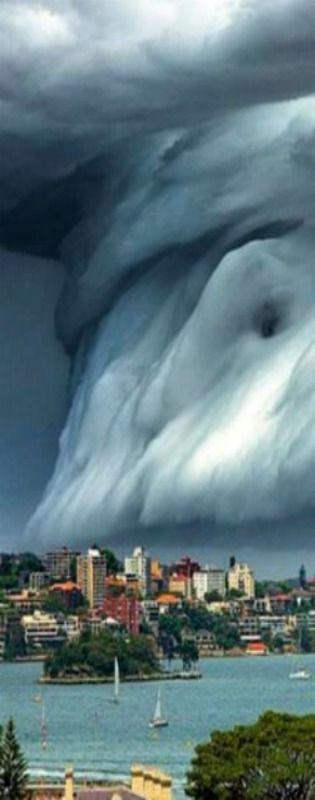 Sydney Australia - Ich würde mir vor Angst in die Hose machen, wenn ich das aus der Nähe sehe.