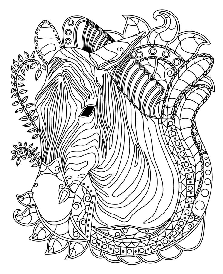 Zebra Colorish Coloring Book For Adults Mandala Relax