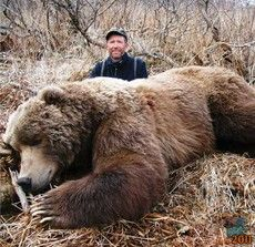 Világcsúcs Kodiak barnamedve
