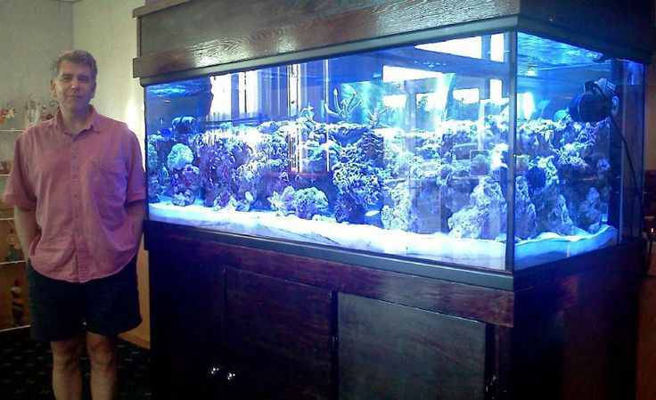 Want a 300 Gallon Aquarium Setup. Opinions?