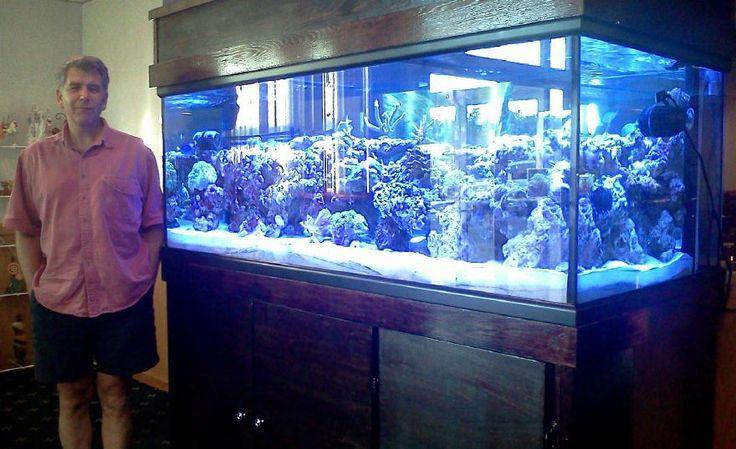 Want a 300 Gallon Aquarium Setup. Opinions?