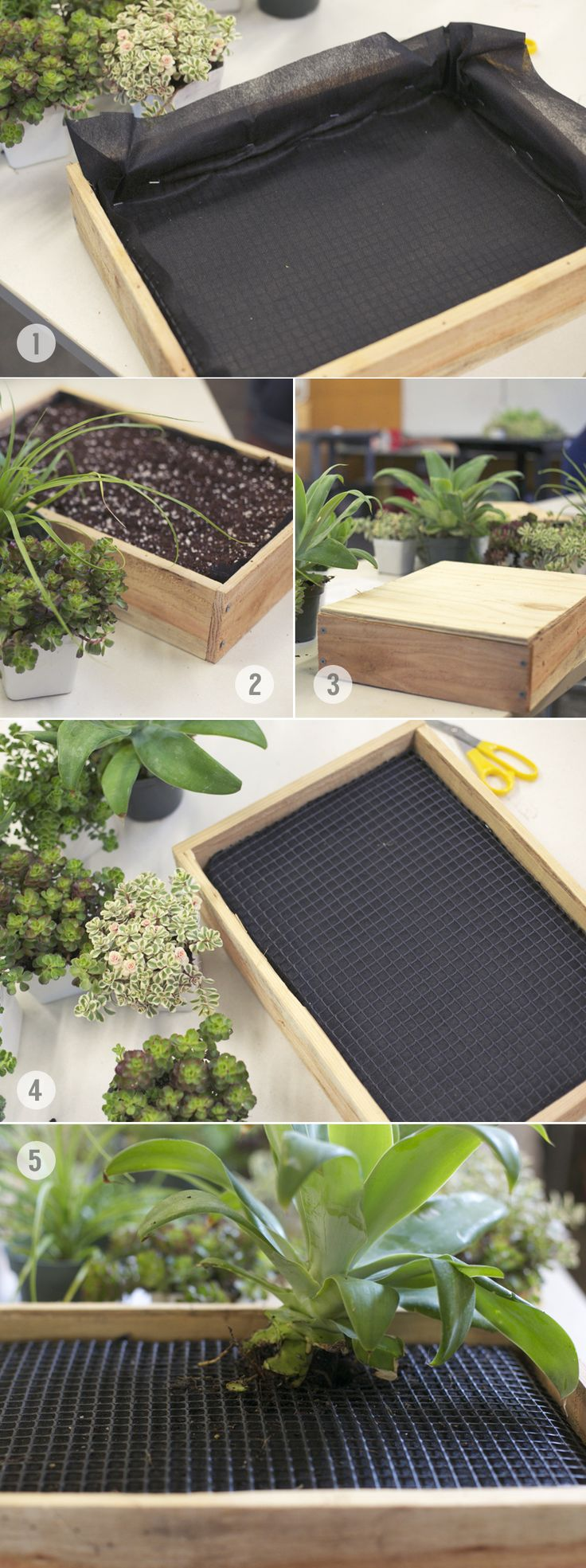 How to create a sturdy frame for planting a vertical succulent garden #diy #succulents #gardening