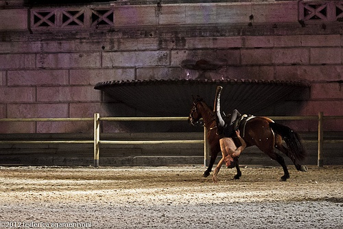 2012_02_18_spettacolo_i_cavalli_di_roma_FEDERICAAGAMENNONI_-0280