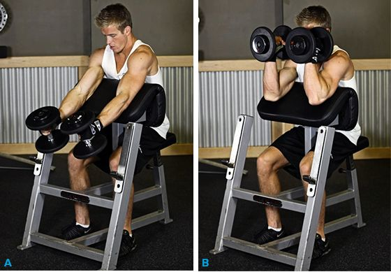 Bodybuilding.com's 10 Highest-Rated Biceps Exercises