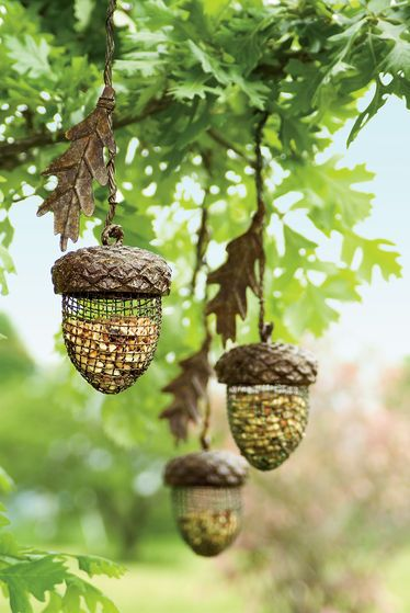Acorn Birdfeeder. This will make those squirrels so mad, since they try to get all the birdfeed all of the time.