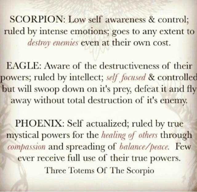 Scorpion, Eagle & Phoenix