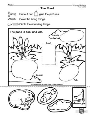 parts of a pond worksheet google search science and social studies science worksheets. Black Bedroom Furniture Sets. Home Design Ideas