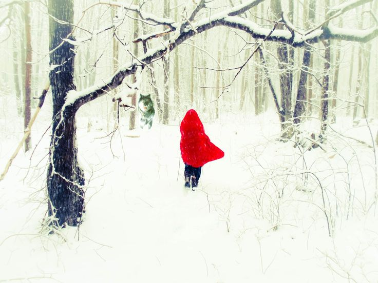Red Riding Hood Lost in the Woods with the Wolf 3 Fine Art Original Photograph
