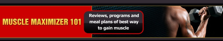 The Somanabolic Muscle Maximizer has become one of the most popular muscle-building programs, especially among skinny guys who want to bulk up fast.
