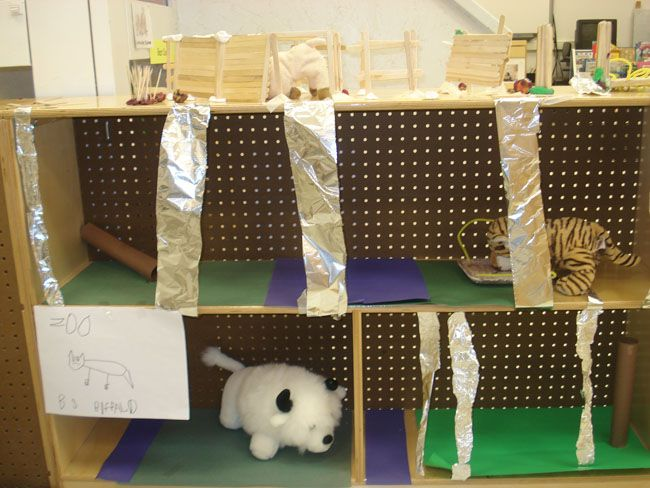 Classroom Zoo Ideas : Creating a classroom zoo the process which class took