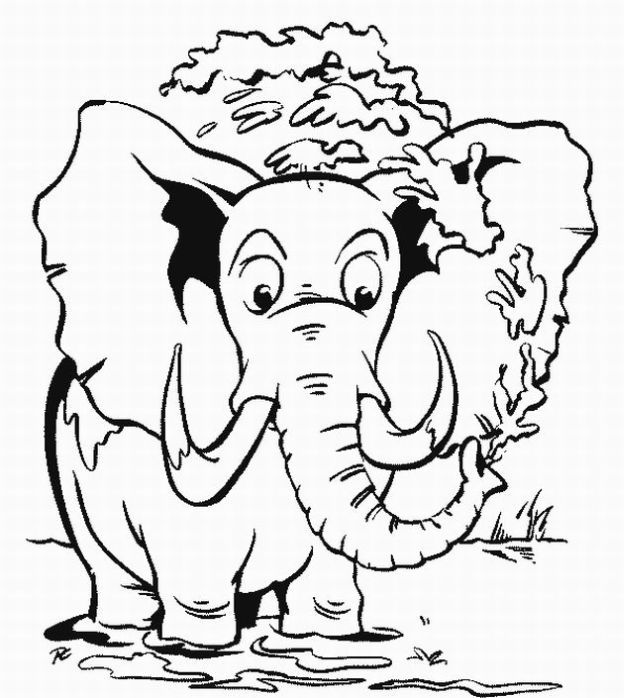 animal safari colouring pages cbaaf animal coloring pages