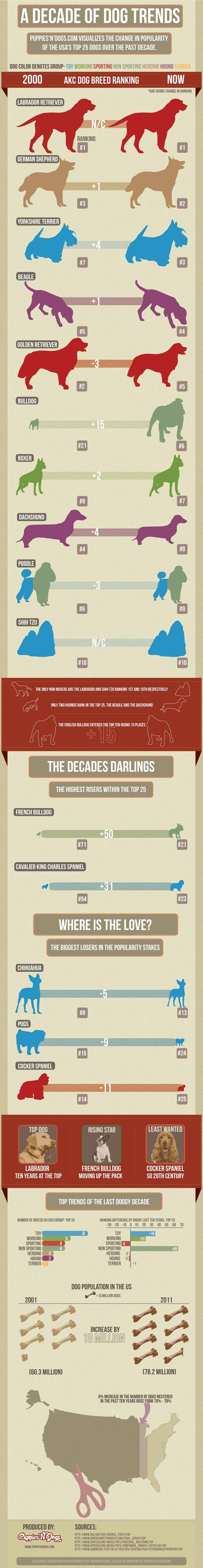Favorite dog breeds, how our favorites have changed over time, and other interesting dog info.