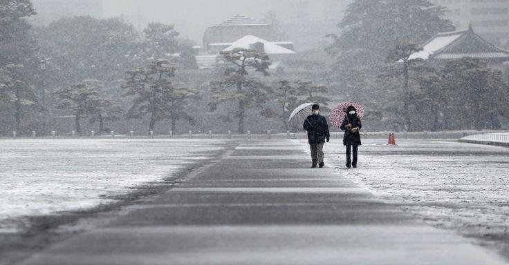 Visitantes caminham pelo palácio imperial japonês enquanto neve cai em Tóquio, em 30/01/2015. Após fortes nevascas, dezenas de voos domésticos foram cancelados, e as empresas calculam que mais voos com chegada ou partida em Tóquio devem ser cancelados.  Fotografia: Yuya Shino/Reuters.