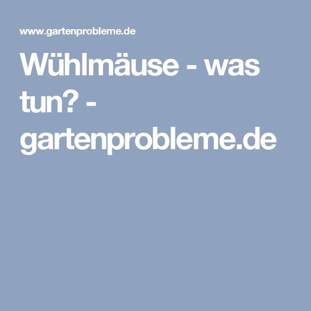 Wühlmäuse - was tun? - gartenprobleme.de