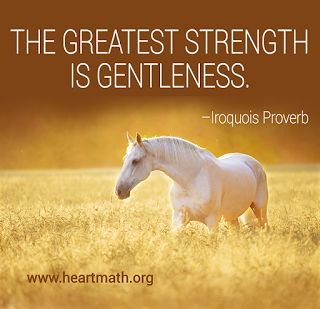 The greatest strength is gentleness. - Iroquois tribe  proverb #native #american