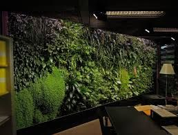 green wall texture - Google Search