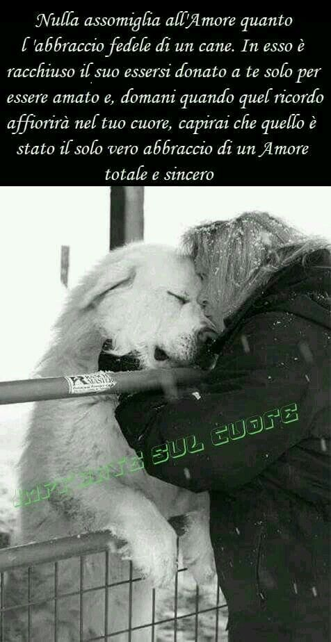 Amore puro