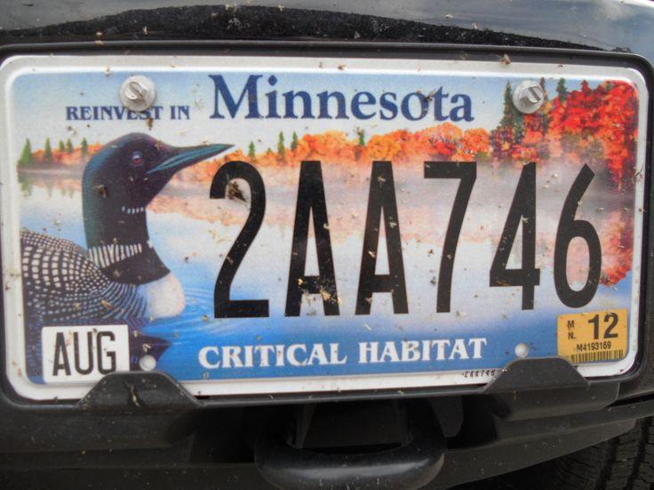 Plaque d'immatriculation personnalisée du Minnesota