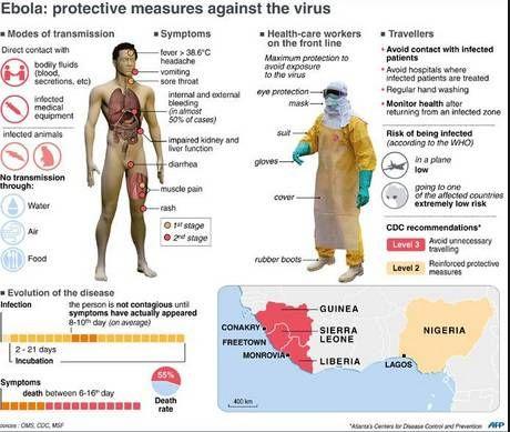 sintomi dell'ebola - Google Search